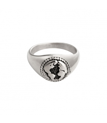 Zilverkleurige ring met wereld bol afdruk
