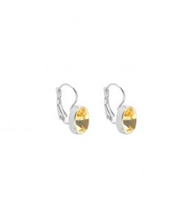 Mooie zilverkleurige oorhangers met een sprankelende gele steen