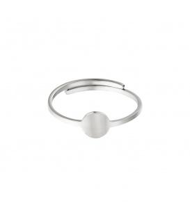 Zilverkleurige ring met een cirkel