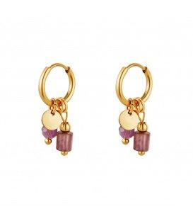 Goudkleurige oorbellen met twee paarse stenen als bedel