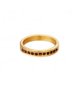 Goudkleurige ring met kleine robijnrode ronde zirkoonsteentjes (18)